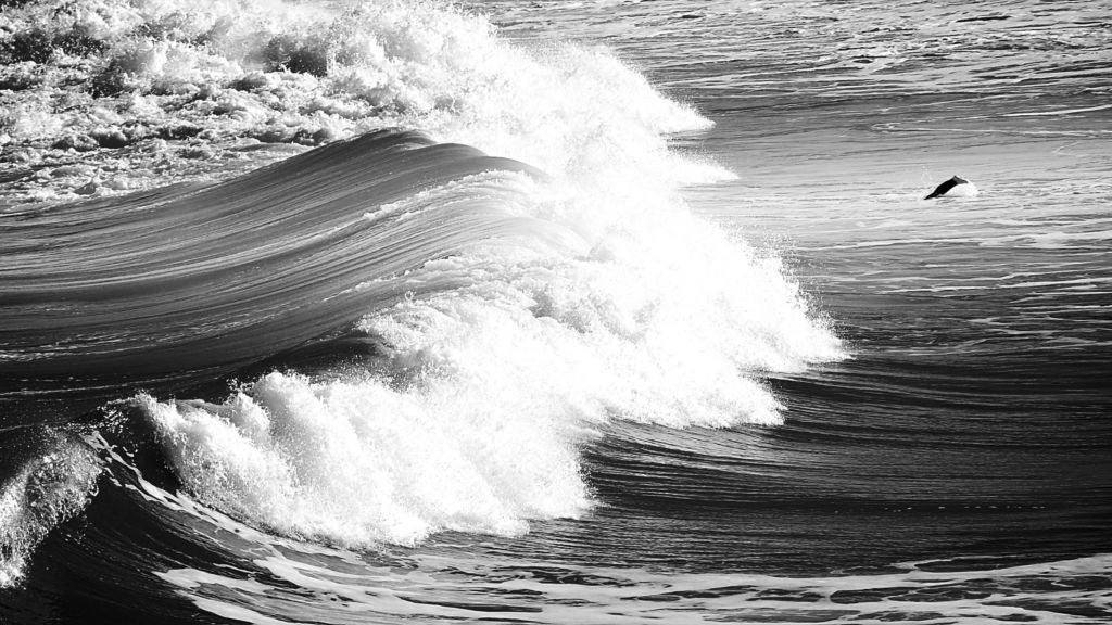 lifestyle photographe surf biarritz - 10